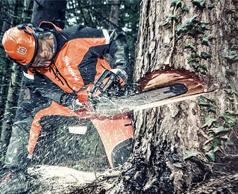 вырубка лесов бензопилами